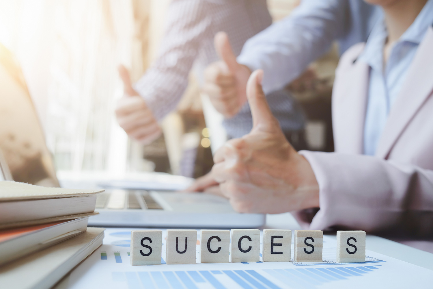 success - Identifying the Critical Success Factors for Your Insurance Organization